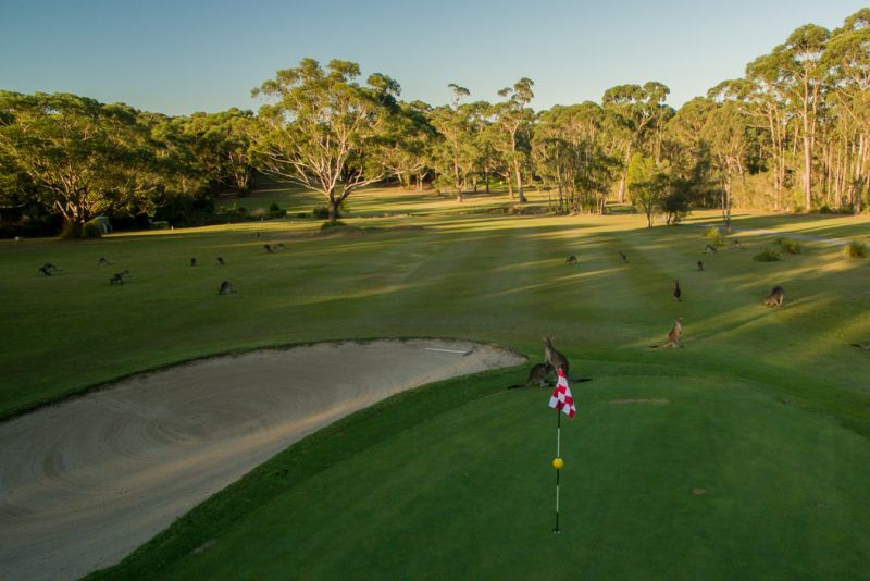 Sussex Inlet Golf Village